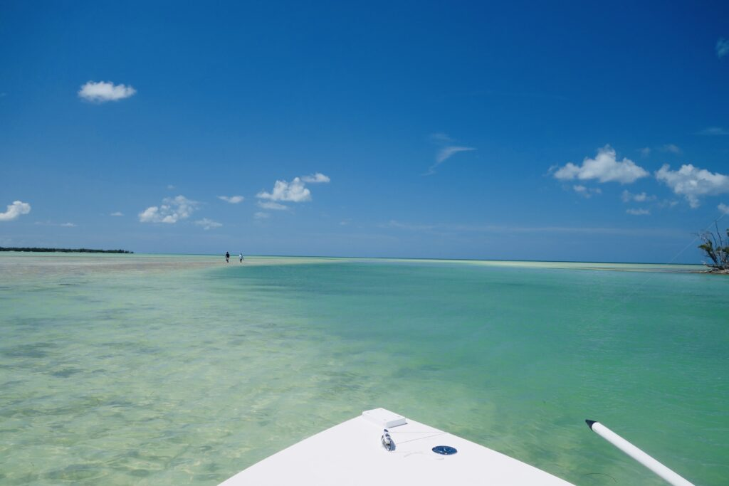 clear water in the florida keys